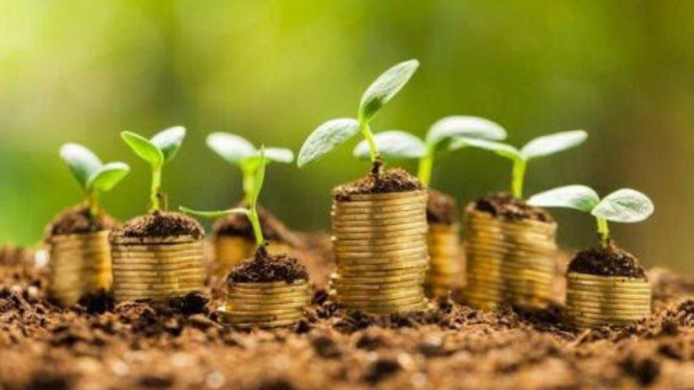 """Por qué los líderes apuestan a una recuperación económica """"verde""""?"""